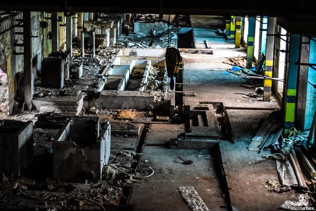 URBEX Królewska Fabryka Papieru MustUrbex Papiernia Konstancin Jeziorna hala produkcyjna fabryka papieru beton