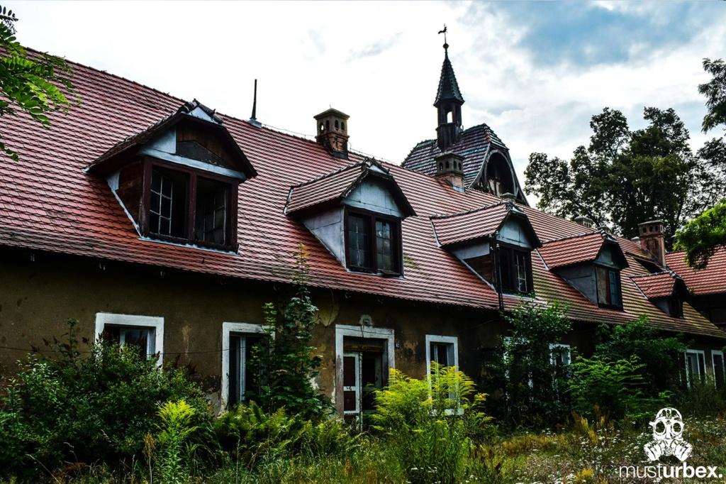 Malowniczy dwór - pałac w Osłej na Dolnym Śląsku, Osła 62, Dolny Śląsk - widok na wieżę z kogutem od strony gospodarstwa