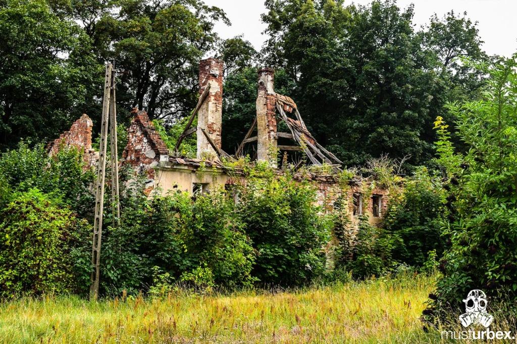 Malowniczy dwór - pałac w Osłej na Dolnym Śląsku, Osła 62, Dolny Śląsk - ruina budynku gospodarczego