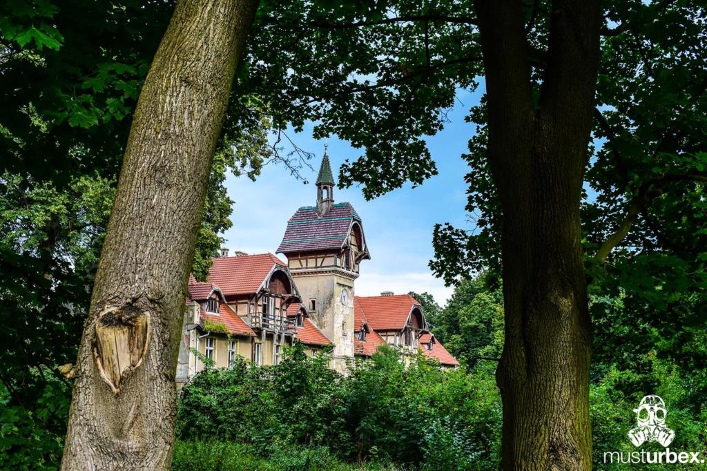 Malowniczy dwór - pałac w Osłej na Dolnym Śląsku, Osła 62, Dolny Śląsk - widok na wieżę spomiędzy dwóch drzew