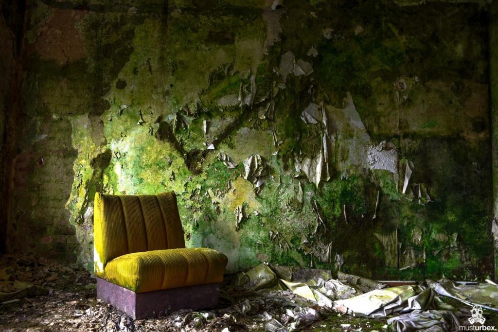 Grand Hotel Atlantis URBEX opuszczony hotel, abandoned hotel, verlassene Hotel, URBEX Biosfera, cały pokój porośnięty mchem, z boku żółty fotel opuŝtêny hotel, musturbex, biosphere