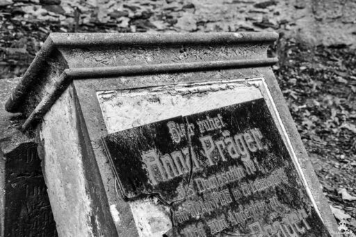"""Kosciół dziewięciu duchów,kościół św. Jerzego, Kostel devíti duchů, musturbex, urbex, Urban exploration, eksploracja miejska, abandoned place, abandoned inn, abandoned restaurant , architecture, architektura, europe exploration, exploration, forgotten, forgotten place, forgotten places, lost place, lostplaces, opuszczone miejsca, rotten place, urban exploration, urban explorer, urban exploring, urbex, urbex, URBEX FOTO, URBEX fotografia, URBEX photo, urbex photography, urbex Polska, urbex world, urbexfotografia, Verfall, verlassene Orte, Beauty of decay, zapomniane miejsca photo,kościół, świątynia, duchy, figury, pomniki, rzeźby, Jakub Hadrava, gips, gipsowe rzeźby, gipsowe figury, Lukova, Kościół Dziewięciu Duchów w Czechach, Kirche der neun Geister, Church of the Nine Spirits, Church of the Nine Ghosts, Nine ghosts church, Kostel devíti duchů, Kostol deviatich duchov, ławki, miejsce kultu, religia, miejsce kultu religijnego, Przybytek Boży, wierni, Przybytek Modlitwy, miejsce modlitwy, praca """"Mój umysł"""""""